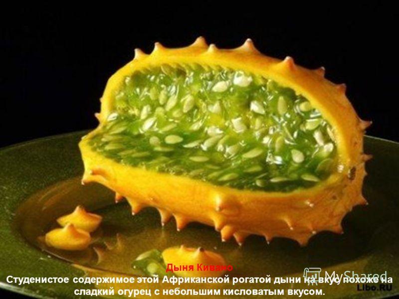 Бананы, киви, фейхоа, апельсины, манго, маракуя, мандарины, ананасы, капуста, картофель, морковь, горох, бобы, … – это фрукты и овощи, которые мы можем купить почти в любом магазине, но видовое разнообразие нашей планеты куда богаче. И в мире произра