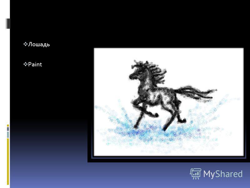 Лошадь Paint