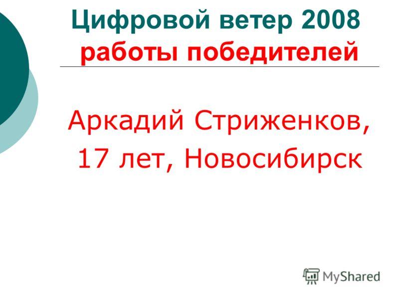 Цифровой ветер 2008 работы победителей Аркадий Стриженков, 17 лет, Новосибирск