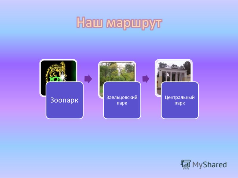 Зоопарк Заельцовский парк Центральный парк