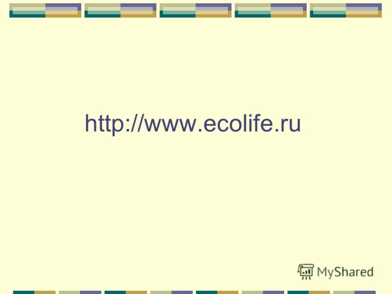 http://www.ecolife.ru