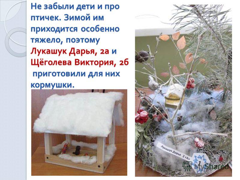Не забыли дети и про птичек. Зимой им приходится особенно тяжело, поэтому Лукашук Дарья, 2 а и Щёголева Виктория, 2 б приготовили для них кормушки.