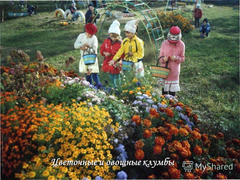 Цветочные и овощные клумбы