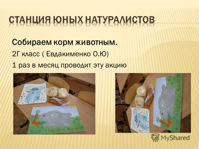 Костицин Данил –ученик 2Г класса Кошкин Алексей –ученик 4Бкласса
