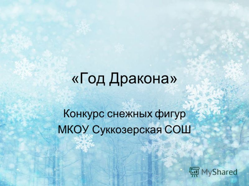«Год Дракона» Конкурс снежных фигур МКОУ Суккозерская СОШ