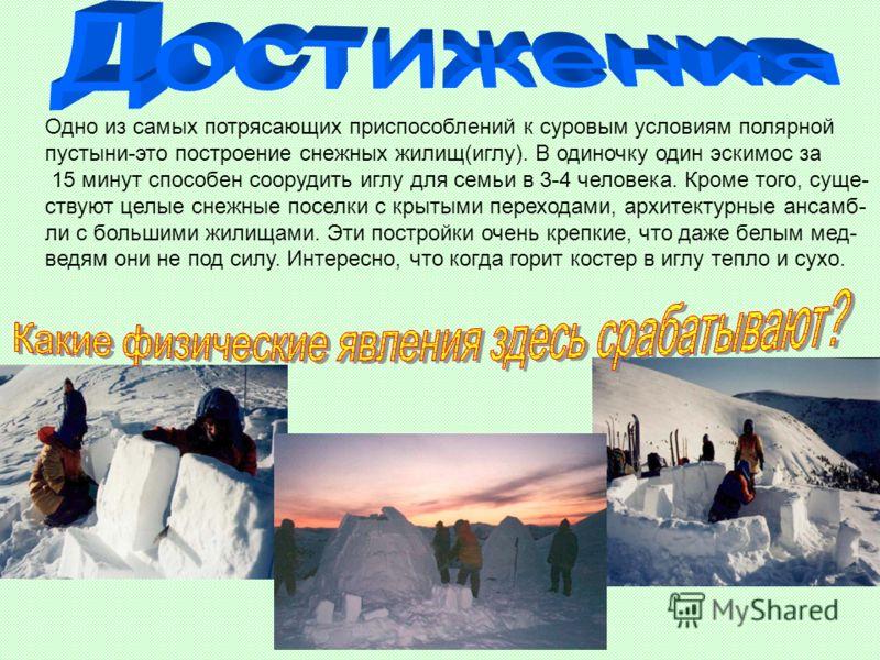 Одно из самых потрясающих приспособлений к суровым условиям полярной пустыни-это построение снежных жилищ(иглу). В одиночку один эскимос за 15 минут способен соорудить иглу для семьи в 3-4 человека. Кроме того, суще- ствуют целые снежные поселки с кр