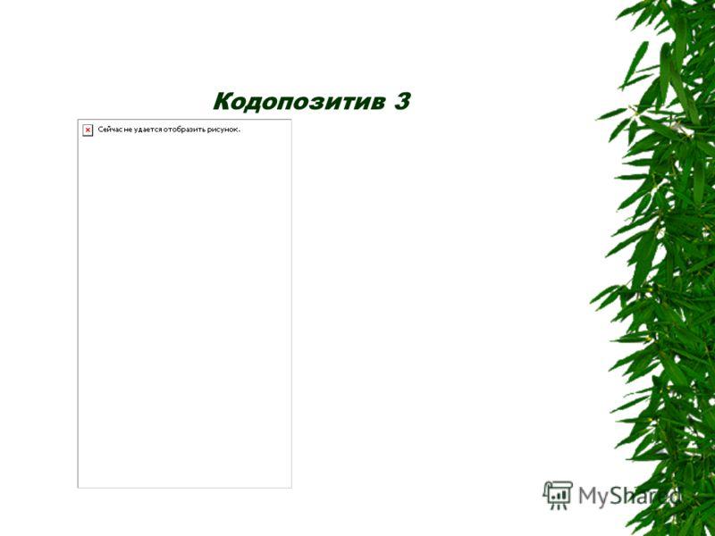 Кодопозитив 2