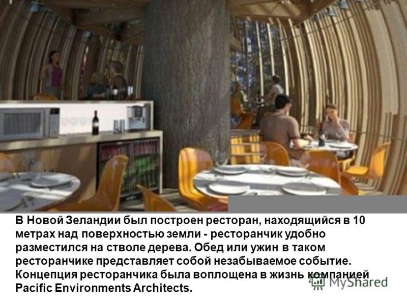 В Новой Зеландии был построен ресторан, находящийся в 10 метрах над поверхностью земли - ресторанчик удобно разместился на стволе дерева. Обед или ужин в таком ресторанчике представляет собой незабываемое событие. Концепция ресторанчика была воплощен