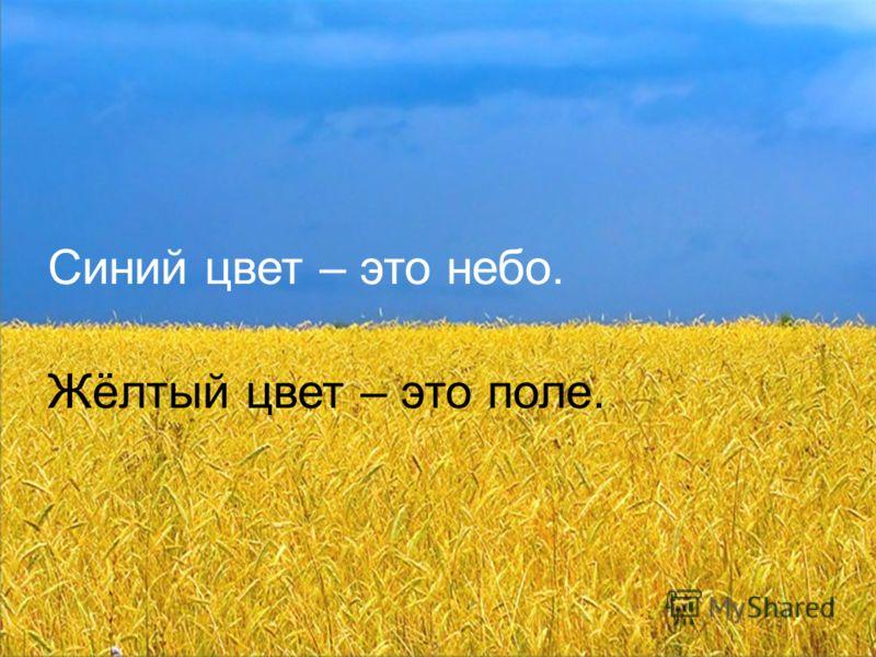 Что значат эти полосы? Это флаг Украины. Синий цвет – это небо. Жёлтый цвет – это поле.