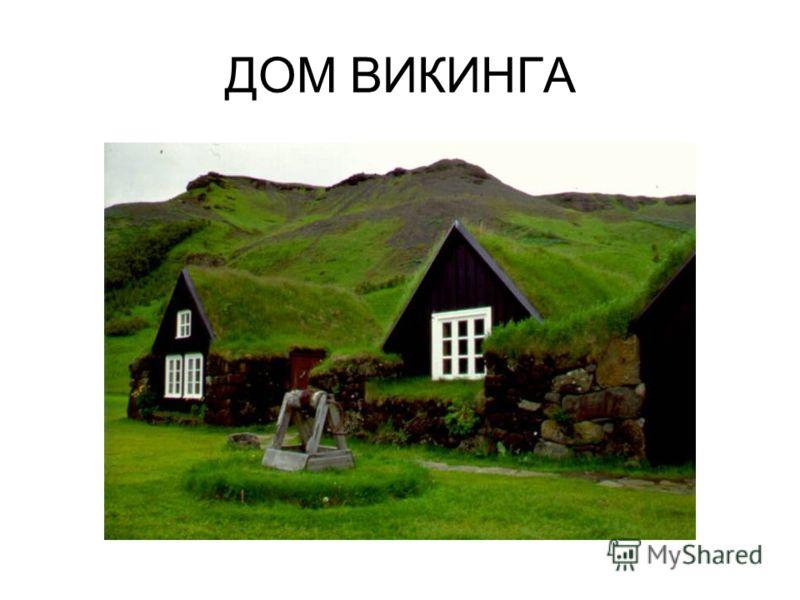 ДОМ ВИКИНГА