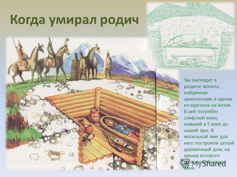 Так выглядит в разрезе могила, найденная археологами в одном из курганов на Алтае. В ней погребён скифский воин, живший в 5 веке до нашей эры. В могильной яме для него построили целый деревянный дом, на крышу которого положили боевого коня. Когда уми