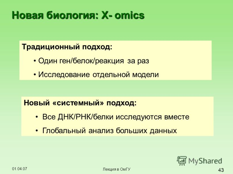 01.04.07 43 Лекция в ОмГУ Новая биология: X- omics Традиционный подход: Один ген/белок/реакция за раз Исследование отдельной модели Новый «системный» подход: Все ДНК/РНК/белки исследуются вместе Глобальный анализ больших данных