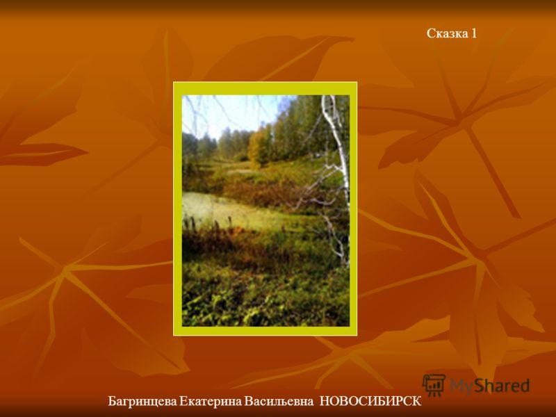 Сказка 1 Багринцева Екатерина Васильевна НОВОСИБИРСК