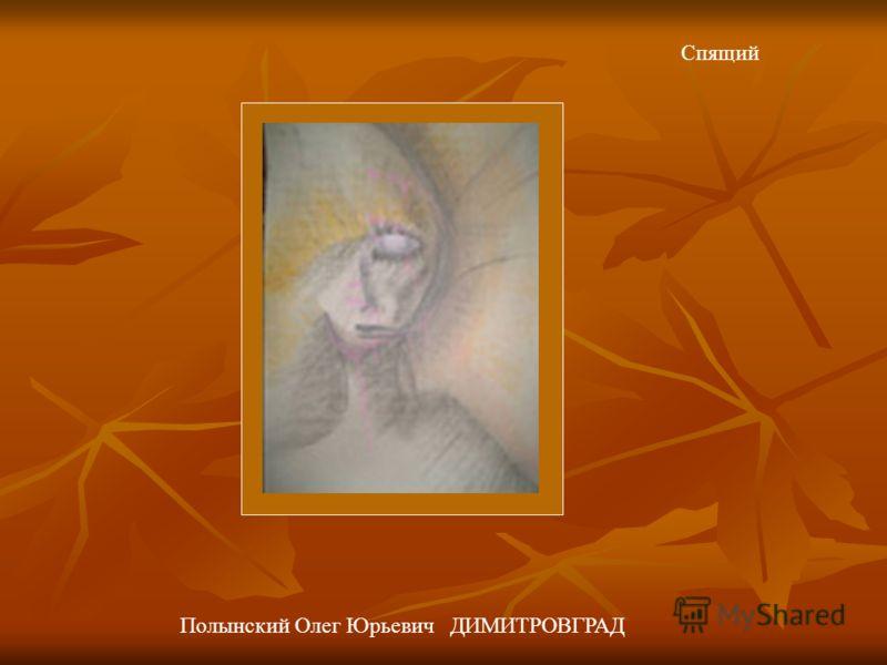 Спящий Полынский Олег Юрьевич ДИМИТРОВГРАД