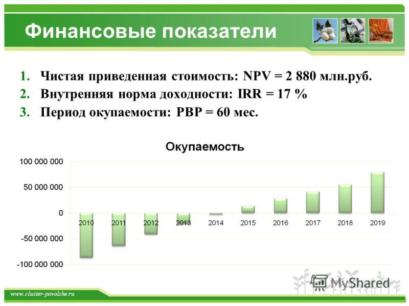 www.cluster-povolzhe.ru Финансовые показатели 1.Чистая приведенная стоимость: NPV = 2 880 млн.руб. 2.Внутренняя норма доходности: IRR = 17 % 3.Период окупаемости: PBP = 60 мес.