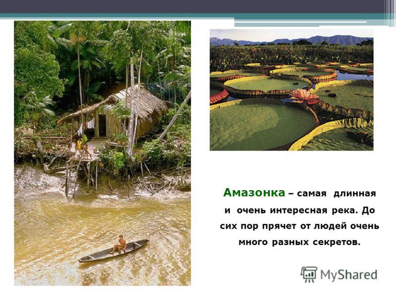 Амазонка – самая длинная и очень интересная река. До сих пор прячет от людей очень много разных секретов.