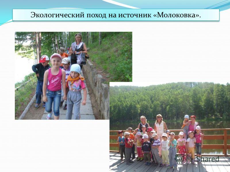 Экологический поход на источник «Молоковка».