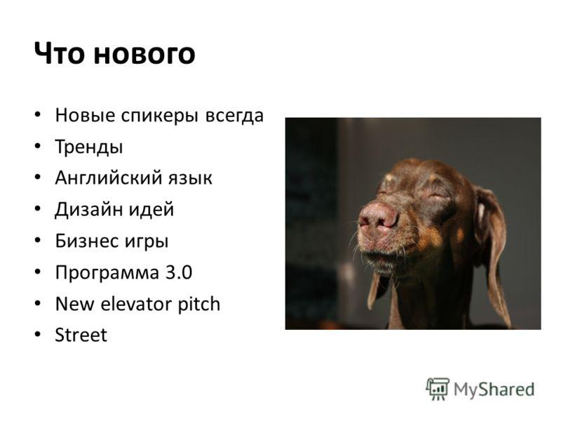 Что нового Новые спикеры всегда Тренды Английский язык Дизайн идей Бизнес игры Программа 3.0 New elevator pitch Street