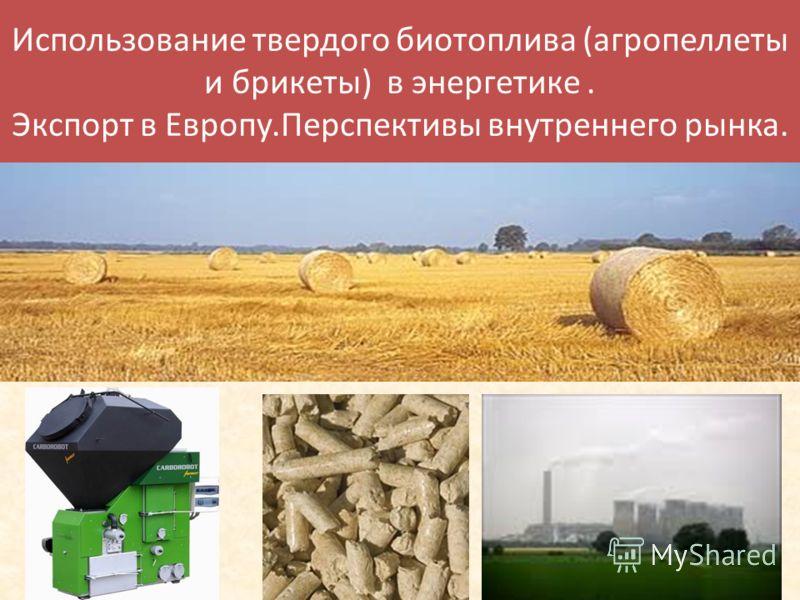 Использование твердого биотоплива (агропеллеты и брикеты) в энергетике. Экспорт в Европу.Перспективы внутреннего рынка.