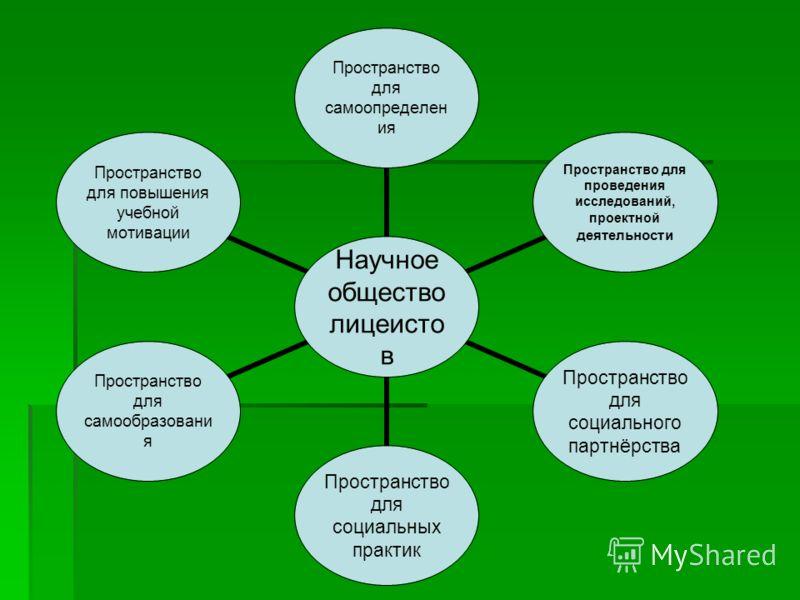 Научное общество лицеистов Пространство для самоопределения Пространство для проведения исследований, проектной деятельности Пространство для социального партнёрства Пространство для социальных практик Пространство для самообразования Пространство дл