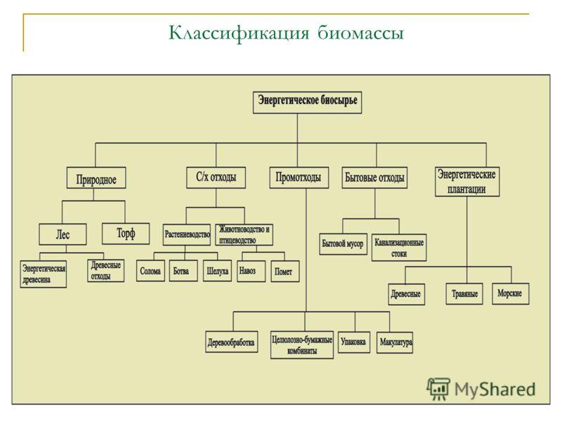 Классификация биомассы