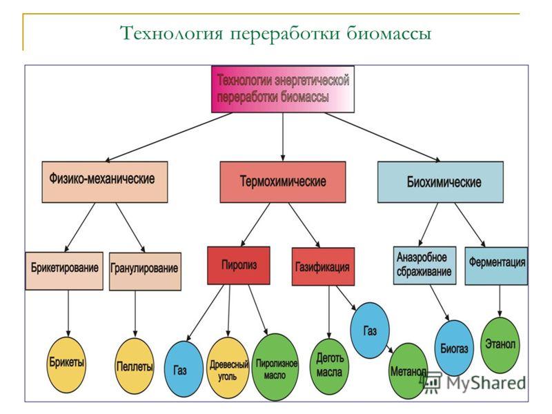Технология переработки биомассы