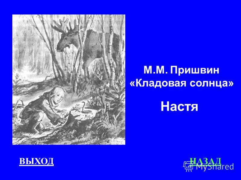 ВЫХОДНАЗАД М.М. Пришвин «Кладовая солнца» Настя