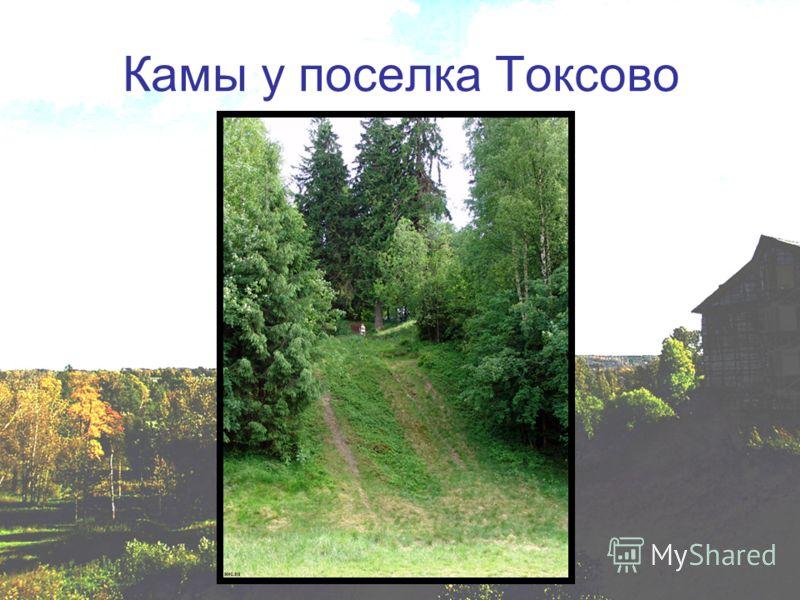 Камы у поселка Токсово