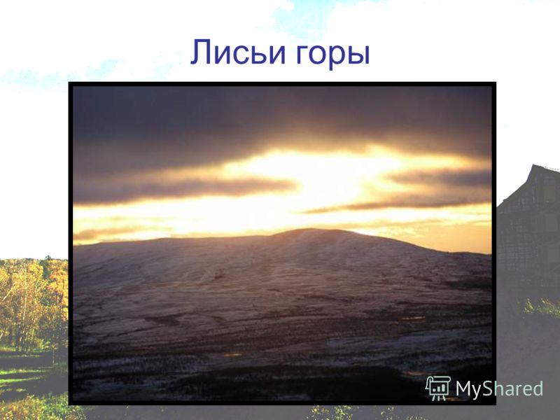 Лисьи горы