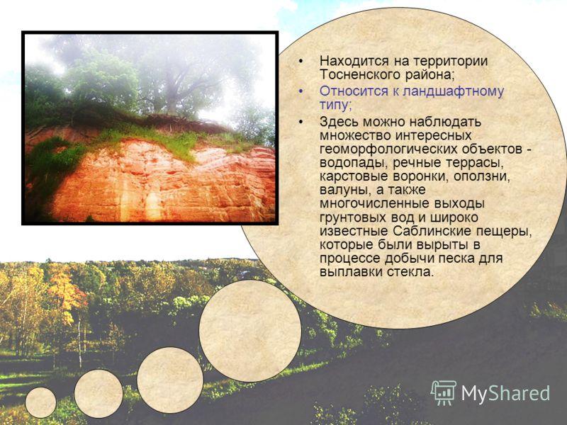 Находится на территории Тосненского района; Относится к ландшафтному типу; Здесь можно наблюдать множество интересных геоморфологических объектов - водопады, речные террасы, карстовые воронки, оползни, валуны, а также многочисленные выходы грунтовых
