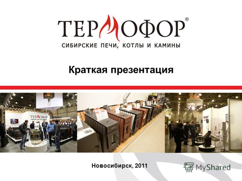 Новосибирск, 2011 Краткая презентация