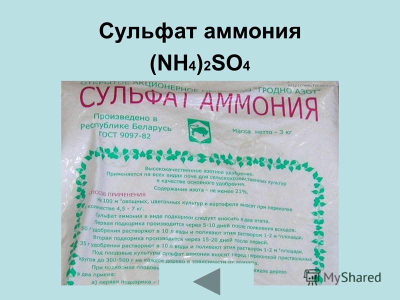 Сульфат аммония (NH 4 ) 2 SO 4
