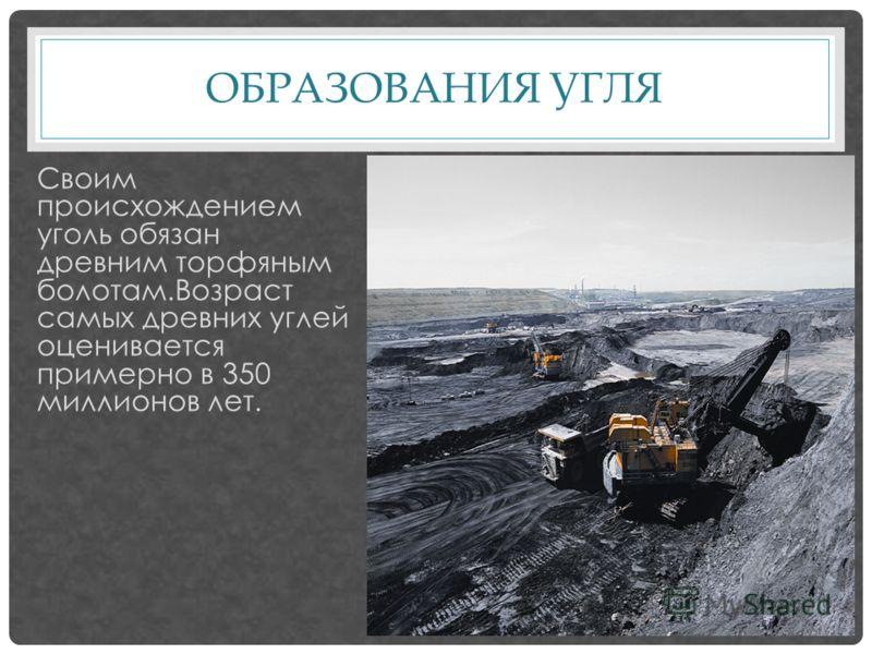 ОБРАЗОВАНИЯ УГЛЯ Своим происхождением уголь обязан древним торфяным болотам.Возраст самых древних углей оценивается примерно в 350 миллионов лет.