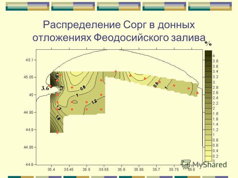 Распределение Сорг в донных отложениях Феодосийского залива