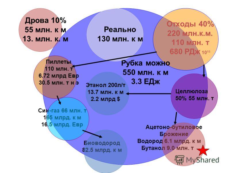 Отходы 40% 220 млн.к.м. 110 млн. т 680 РДж 10 15 Рубка можно 550 млн. к м 3.3 ЕДж Ацетоно- бутиловое Брожение Водород 6.1 млрд. к м Бутанол 9.0 млн. т Этанол 200л/т 13.7 млн. к м 2.2 млрд $ Биоводород 82.5 млрд. к м Син-газ 66 млн. т 165 млрд. к м 16