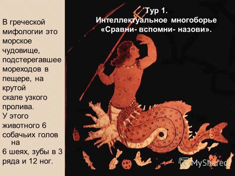 В греческой мифологии это морское чудовище, подстерегавшее мореходов в пещере, на крутой скале узкого пролива. У этого животного 6 собачьих голов на 6 шеях, зубы в 3 ряда и 12 ног. Тур 1. Интеллектуальное многоборье «Сравни- вспомни- назови».