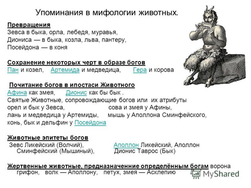 Упоминания в мифологии животных. Превращения Зевса в быка, орла, лебедя, муравья, Диониса в быка, козла, льва, пантеру, Посейдона в коня Сохранение некоторых черт в образе богов ПанПан и козел, Артемида и медведица, Гера и короваАртемидаГера Почитани