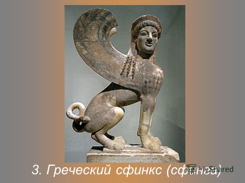 3. Греческий сфинкс (сфинга)