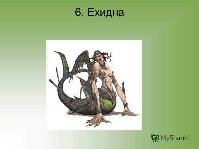 6. Ехидна