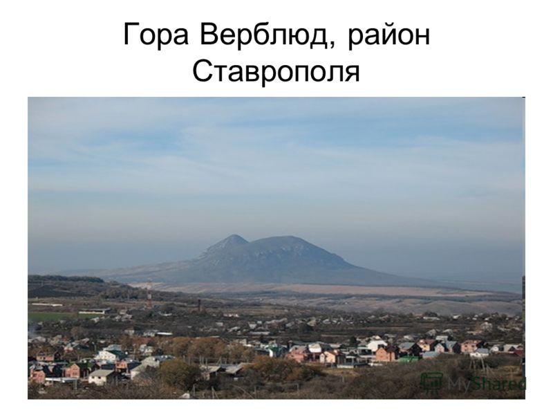 Гора Верблюд, район Ставрополя