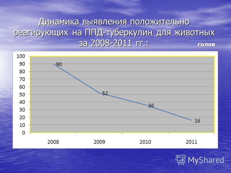 Динамика выявления положительно реагирующих на ППД-туберкулин для животных за 2008-2011 гг.: голов