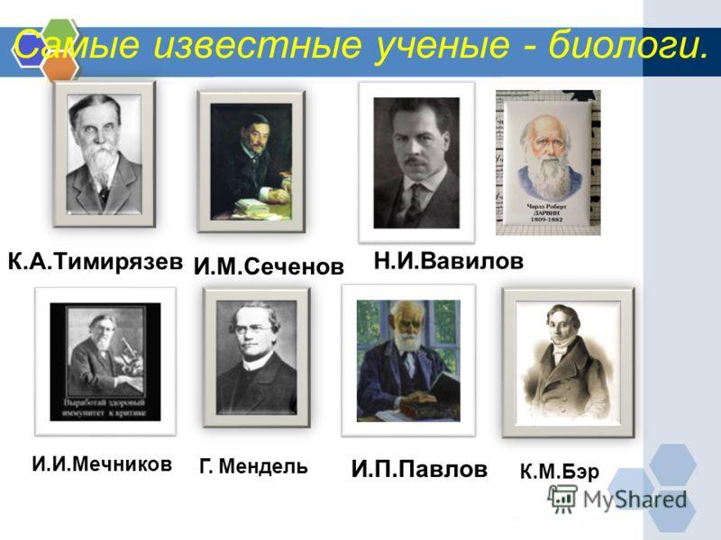 Самые известные ученые - биологи. И.И.Мечников Н.И.Вавилов К.А.Тимирязев И.М.Сеченов И.П.Павлов Г. Мендель К.М.Бэр