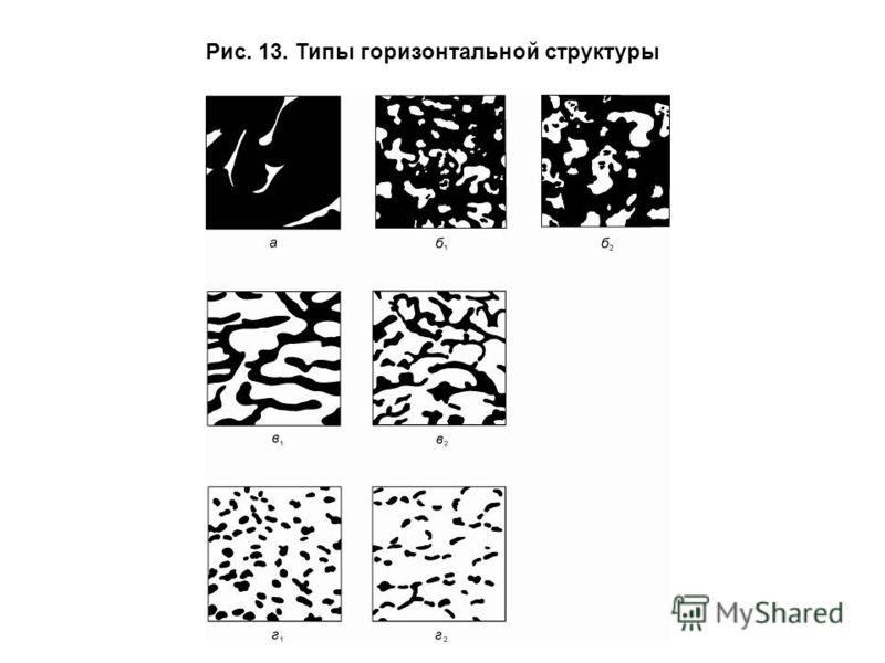 Рис. 13. Типы горизонтальной структуры