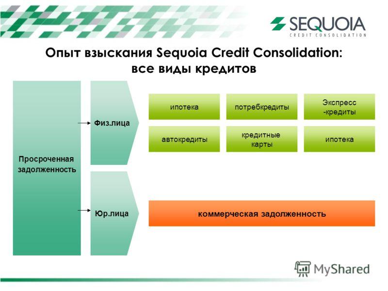 Опыт взыскания Sequoia Credit Consolidation: все виды кредитов Просроченная задолженность ипотека автокредиты потребкредиты кредитные карты Экспресс -кредиты ипотека коммерческая задолженность Физ.лица Юр.лица