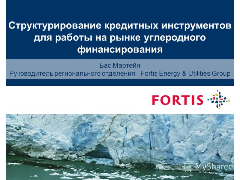 29 August 2012Designator | author1 Структурирование кредитных инструментов для работы на рынке углеродного финансирования Бас Мартейн Руководитель регионального отделения - Fortis Energy & Utilities Group