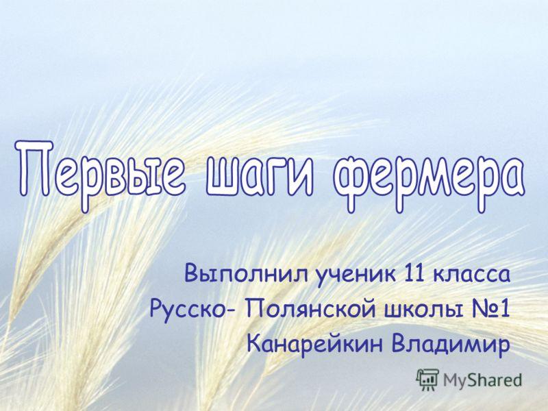 Выполнил ученик 11 класса Русско- Полянской школы 1 Канарейкин Владимир