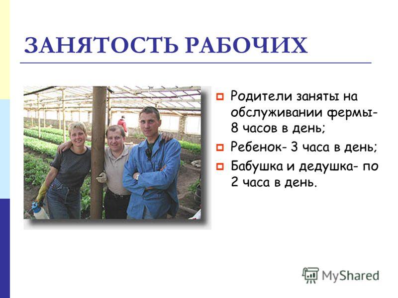 ЗАНЯТОСТЬ РАБОЧИХ Родители заняты на обслуживании фермы- 8 часов в день; Ребенок- 3 часа в день; Бабушка и дедушка- по 2 часа в день.