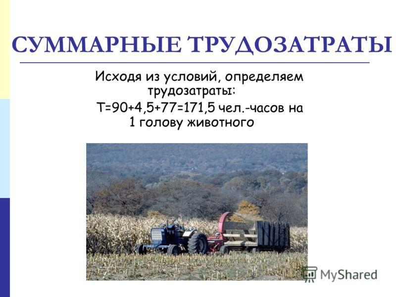 СУММАРНЫЕ ТРУДОЗАТРАТЫ Исходя из условий, определяем трудозатраты: Т=90+4,5+77=171,5 чел.-часов на 1 голову животного