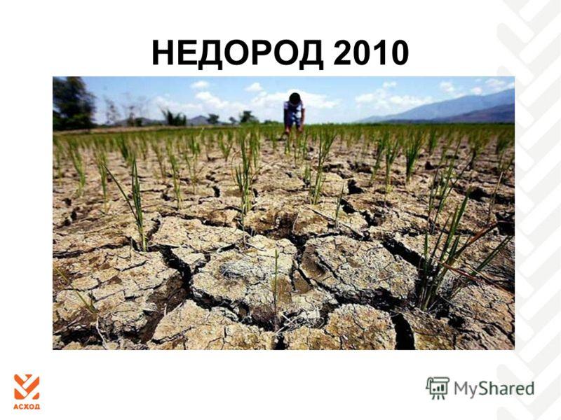 НЕДОРОД 2010