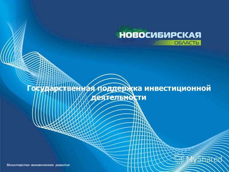 Государственная поддержка инвестиционной деятельности Министерство экономического развития